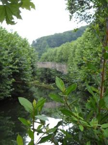 Pont de où l'on peut voir des Laminak