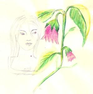 belladone